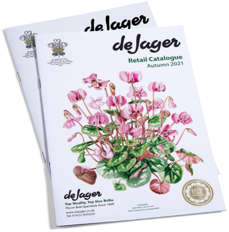 De Jager Bulb Catalogue Cover